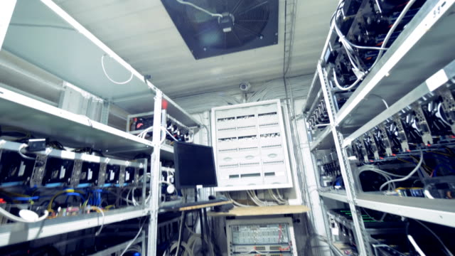 Mining-farm-full-of-working-graphic-cards-and-its-ceiling