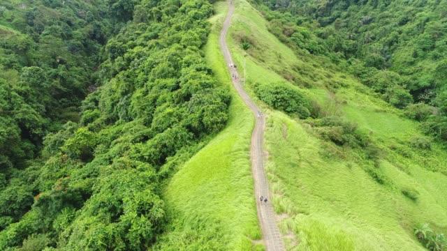 Amazing-Aerial-View-Campuhan-Ridge-Walk-in-Sunlight