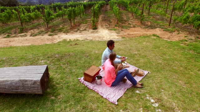 Drone-footage-of-couple-having-a-picnic