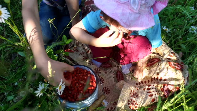 Teen-boy-and-girl-child-eats-wild-strawberry-on-the-meadow-
