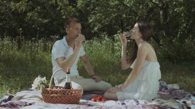 Relaxed-couple-drinking-champagne-on-picnic