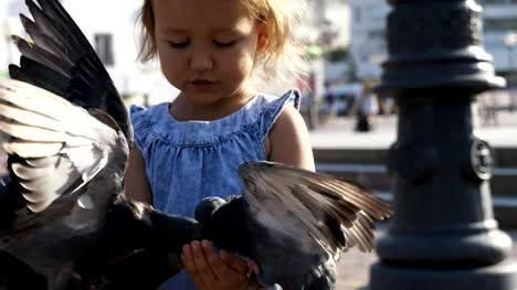 Little-cute-girl-feeding-street-pigeons-in-the-park-at-summer-day-4K-slow-motion