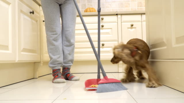 Dog-eats-from-floor-while-his-owner-sweeps-the-kitchen-floor