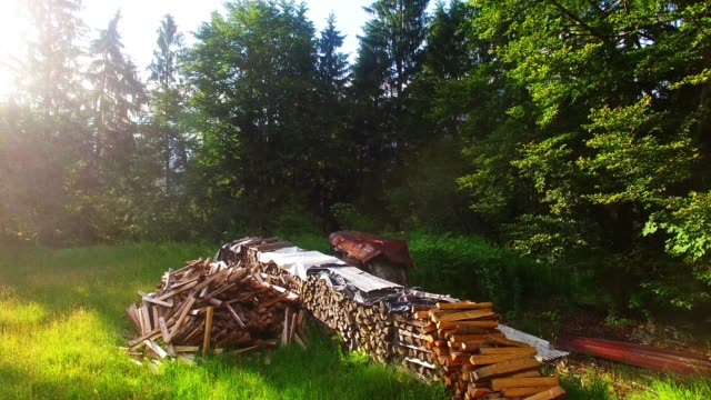 Una-pila-de-leña-en-el-bosque-alpino-Vuelo-de-la-cámara-sobre-la-fuente-de-energía-renovable-