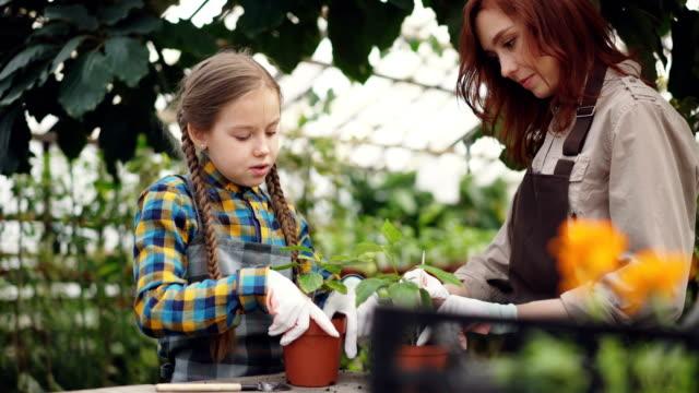 Padre-e-hijo-en-delantales-son-labrar-el-suelo-en-macetas-con-herramientas-de-jardinería-y-hablar-Gente-feliz-agricultura-negocio-familiar-y-hobby-concepto-