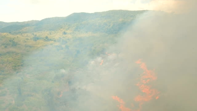 Aerial-view-Forest-fire-Busuanga-Palawan-Philippines