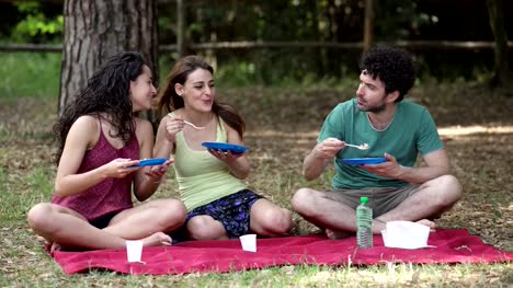 group-of-friends-making-picnic-sitting-on-the-grass-in-the-park