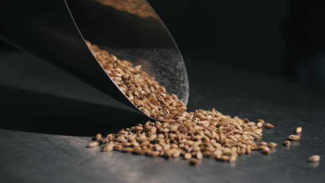 Beat-the-raw-materials-for-beer