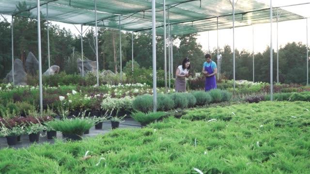 Trabajadores-del-centro-de-jardín-en-obra