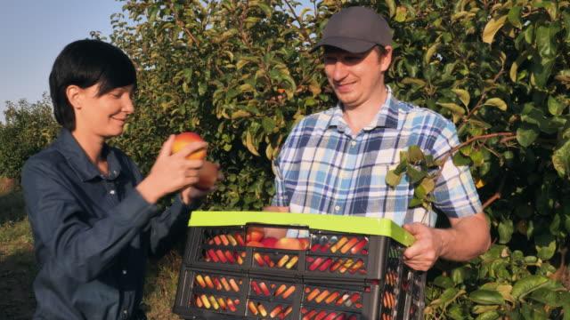 Gente-atractiva-con-un-cultivo-cosechado-al-aire-libre