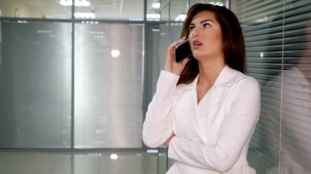 Business-lady-discussing-deal-with-partner-Business-and-communication-concept-
