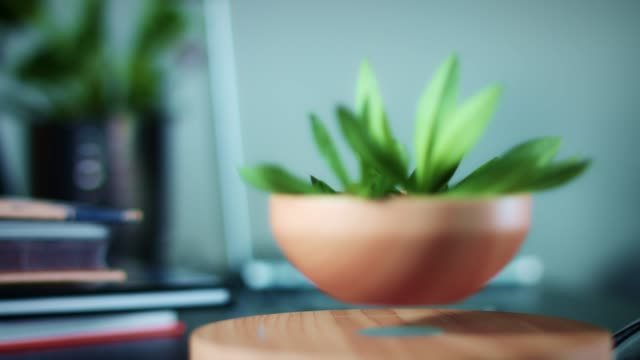 4K-Levitation-Device-with-Plant-in-Corporate-Office
