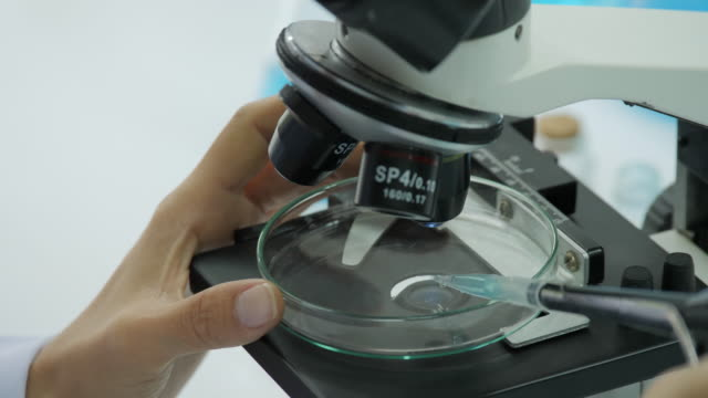 Primer-plano-del-investigador-agregar-líquido-cayendo-a-plato-de-petri