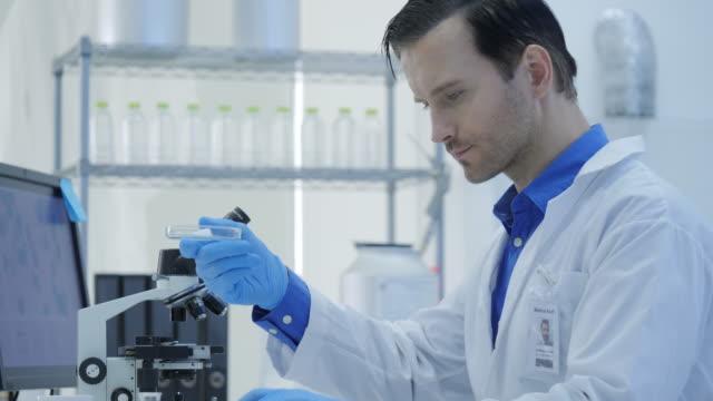 Los-científicos-de-la-investigación-médica-mezcla-compuestos-fumar-del-tubo-de-ensayos-con-la-materia-en-una-placa-Petri