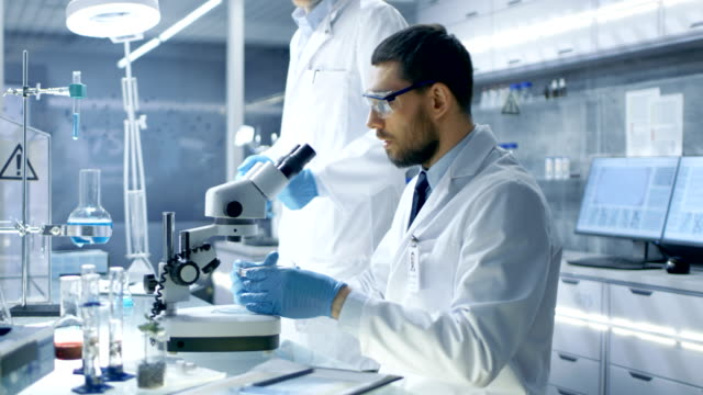 In-a-Modern-Laboratory-Assistant-Brings-Petri-Dish-to-Chief-Research-Scientist-who-Starts-Examining-given-Sample-Under-Microscope-