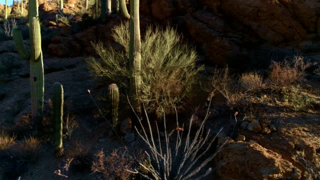 Desert-Mountain-Pass-Drone-Footage---Sunrise-View
