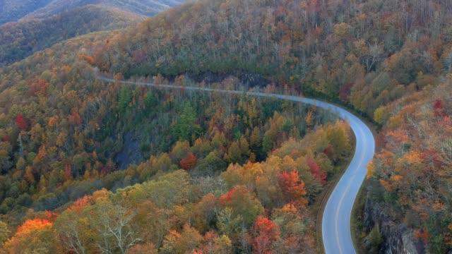 Luftbild-Drohne-des-Herbst-/-Herbst-Blatt-Laub-auf-Highway-215-von-oben-Leuchtenden-Gelb-orange-und-rote-Farben-in-Asheville-North-Carolina-in-den-Blue-Ridge-Mountains-