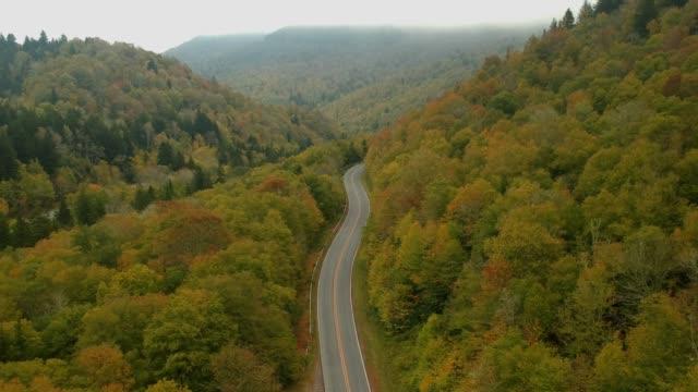 Vista-aérea-del-abejón-de-otoño-/-otoño-hoja-follaje-en-un-Appalachian-Mountain-Road-Colores-amarillo-naranjas-y-rojos-vibrante-en-Asheville-Carolina-del-norte-en-las-montañas-Blue-ridge-