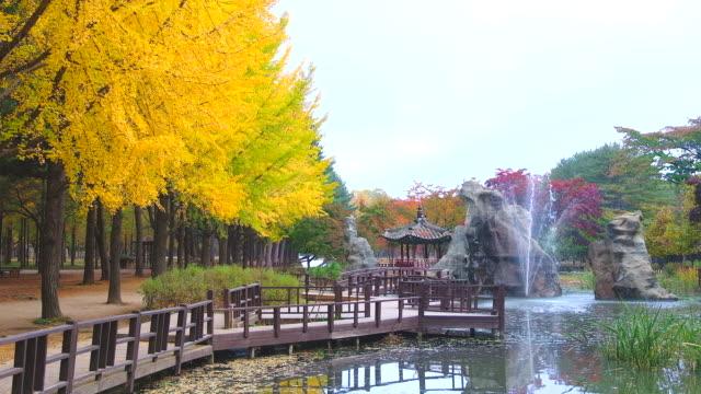 Blick-auf-Nami-Insel-im-Herbst-von-Südkorea