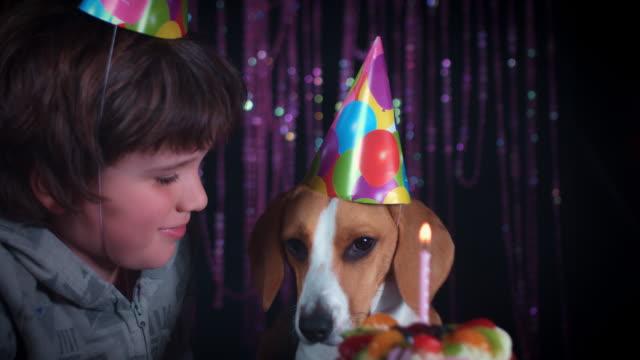4-k-cumpleaños-niño-y-perro-con-torta-y-sombrero
