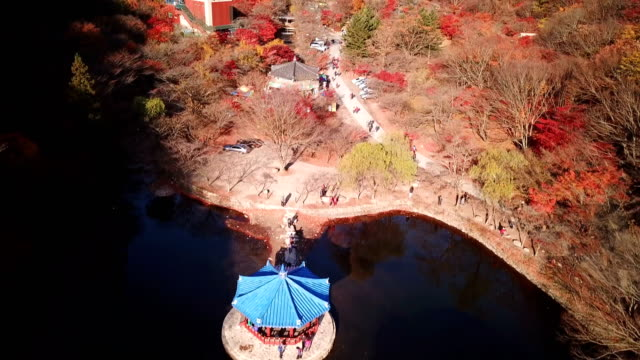 Aerial-view-autumn-forest-of-Naejangsan-National-Park-South-Korea-