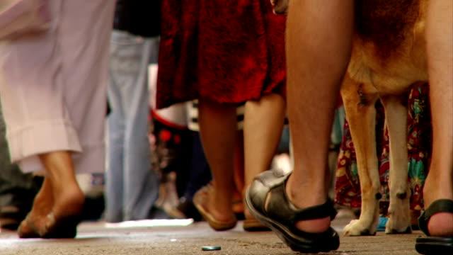 People-walking-at-market