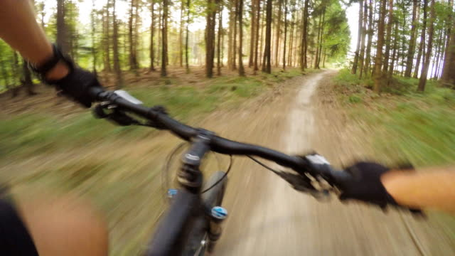Mountain-biking-in-summer-forest-on-bike-trail-first-person-view
