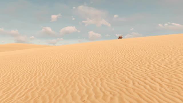 Arabic-man-and-red-horse-among-sandy-desert