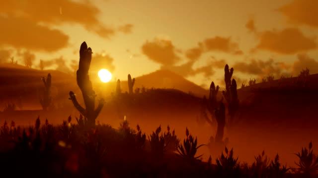 Saguaro-Cactus-en-el-desierto-contra-el-hermoso-sol-de-la-mañana-panorámica-y-alejar