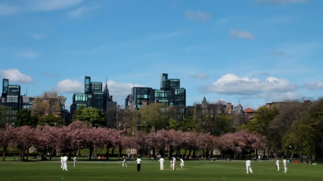 Time-lapse-of-a-cricket-match-in-the-park