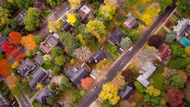 Mit-Suburban-Ausblick-auf-Montreal-und-den-herrlichen-Palmen