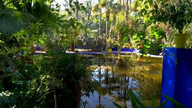 Pond-in-Majorelle-botanical-and-artist-s-landscape-garden-Marrakech-Morocco-4K-UHD
