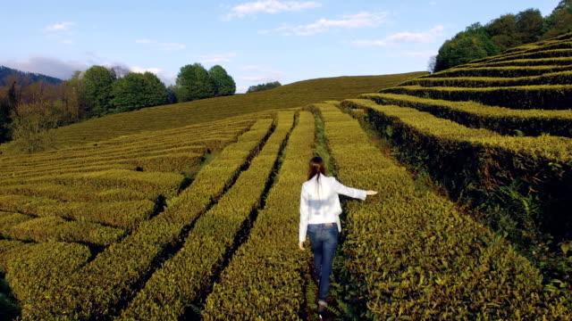 Beautiful-woman-walking-on-the-tea-plantations