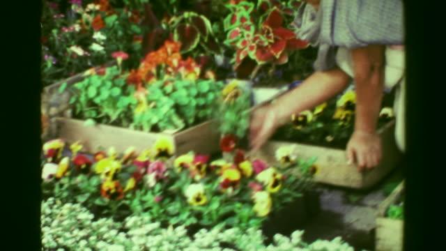 1978:-mujer-hispana-selección-flor-las-plantas-en-el-mercado-del-jardinero-