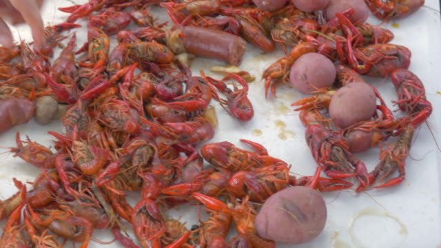 Pan-Over-a-Traditional-Louisiana-Crawfish-Boil