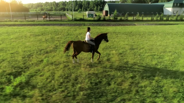 Una-mujer-joven-cabalga-trotted-en-un-caballo-castaño-de-un-lado-a-la-cámara-cámara-lenta