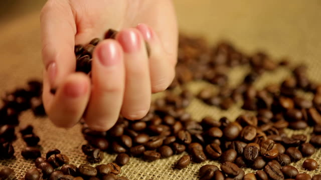 Expert-s-hand-checking-light-roasted-coffee-beans-quality-control-at