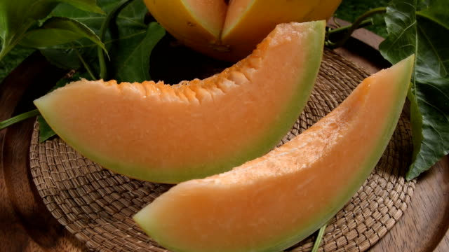 young-sprout-of-Japanese-melons-or-cantaloupe-melons-plants-growing-in-greenhouse