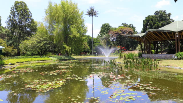 Bogota-pond-with-fountain-and-nature-in-public-garden-with-sun