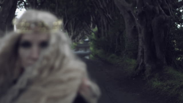 4k-Fantasy-Shot-in-Dark-Hedges-of-a-Queen-(-close-up-focus-changing)