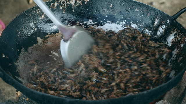 Woman-stirring-deep-frying-grasshoppers-in-a-wok-using-metal-tongs-(-close-up)