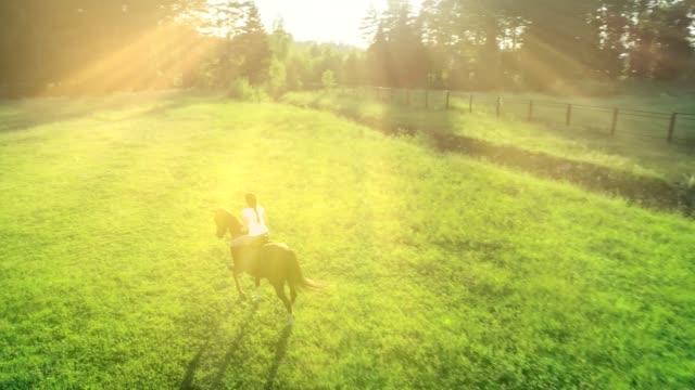 Atractiva-mujer-montando-en-un-caballo-marrón-en-un-prado-de-trote-en-un-día-de-verano-Cámara-lenta