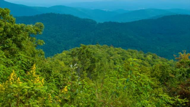Inclinación-capacidad-de-follaje-verde-en-capas-de-montañas-Blue-Ridge