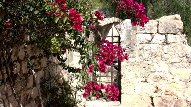 Flores-colgando-frente-a-la-puerta-en-patio-de-iglesia