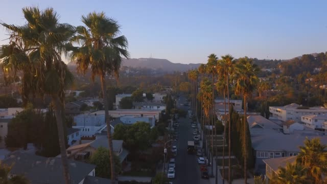 Beautiful-Los-Angeles-district-with-long-palms-by-the-side-of-the-road-