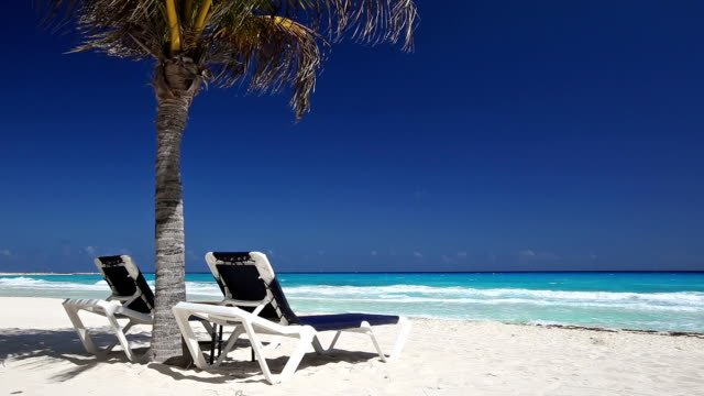 Tropical-beach-with-sun-umbrellas-and-beds
