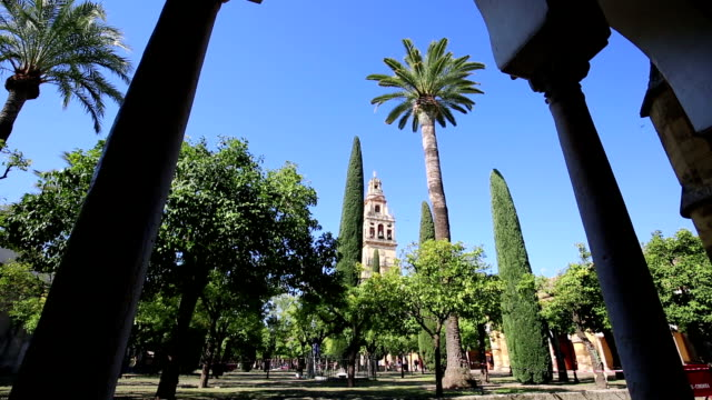 Inside-the-mezquita-(a-surprising-mixture-of-mosque-and-cathedral)-in-Cordoba-Spain-A-big-courtyard-with-orange-trees-and-cypresses-Bell-tower-in-the-background-