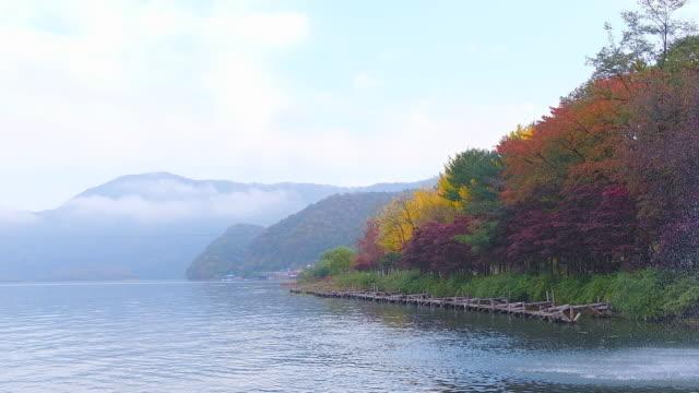 Nami-Island-in-autumn-South-Korea
