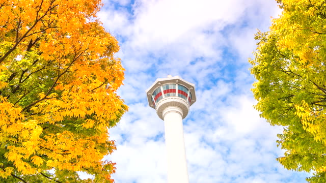 4K-Time-Lapse-busan-tower-in-autumn-of-South-Korea