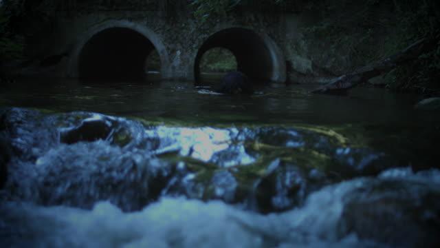 4K-Horror-mujer-salir-del-oscuro-río